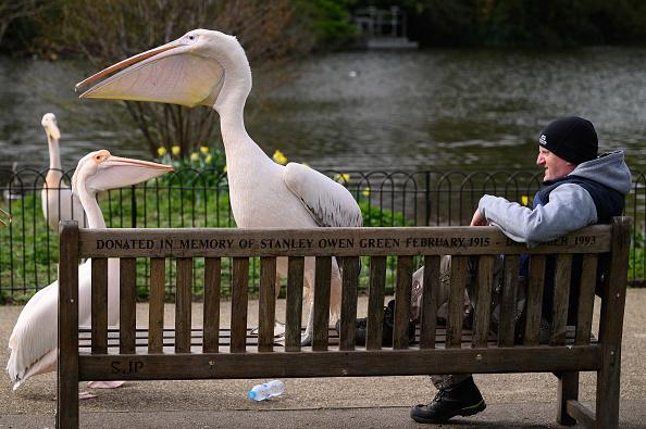Bench「UK Daily Life 2021」:写真・画像(11)[壁紙.com]