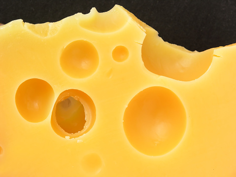 Swiss Cheese「cheeeeeeeeese!!!!!」:スマホ壁紙(4)