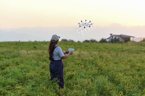 田畑「ドローンを使用して彼女の作物を散布農家の若い女性」:スマホ壁紙(19)