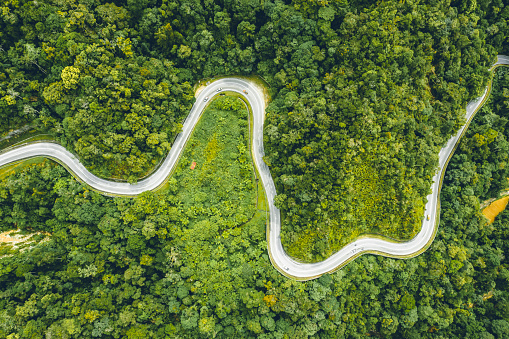 Hairpin Curve「Rain forest aerial view in Malaysia」:スマホ壁紙(16)
