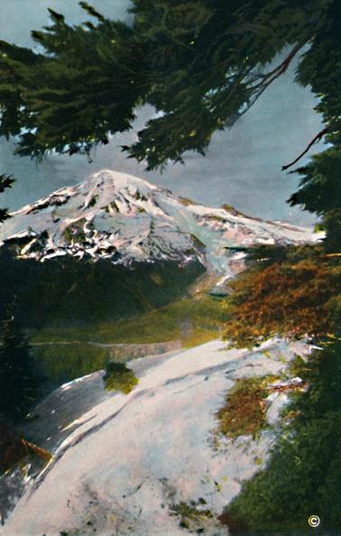 Washington Park「Mount Tacoma From Eagle Peak」:写真・画像(18)[壁紙.com]