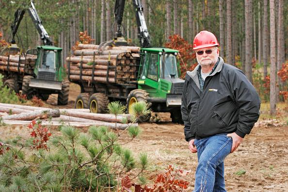 Lumber Industry「Timber harvesting, USA」:写真・画像(2)[壁紙.com]