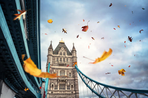 London Bridge - England「Autumn In London」:スマホ壁紙(9)