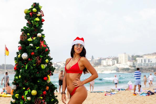 Christmas Decoration「Christmas Celebrations In Australia」:写真・画像(3)[壁紙.com]