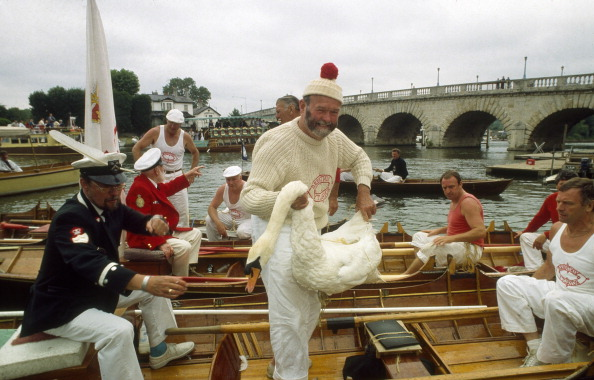 Tom Stoddart Archive「Swan Upping」:写真・画像(6)[壁紙.com]