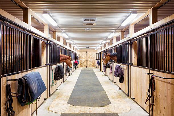 Contemporary horse stalls:スマホ壁紙(壁紙.com)