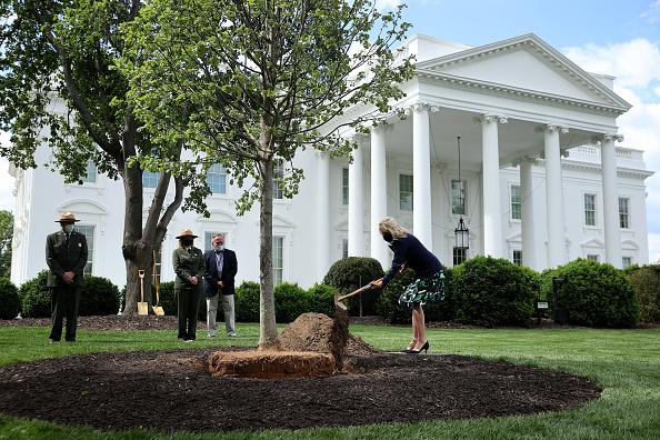 Planting「First Lady Dr. Jill Biden Participates In Arbor Day Tree Planting Ceremony」:写真・画像(19)[壁紙.com]
