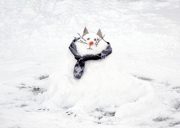 Animal Whisker「Snow Scene With A Snowcat Snowman,」:写真・画像(5)[壁紙.com]