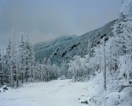 グリーン山脈「Snow scene, Green Mountains, Vermont, USA」:スマホ壁紙(11)