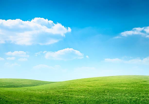 デジタル合成緑の牧草地、ブルースカイ:スマホ壁紙(壁紙.com)