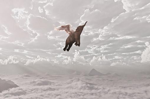Digital Composite「Elephant flying in clouds」:スマホ壁紙(3)