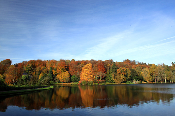 Tree「The UK Continues To Enjoy The Autumn Colours」:写真・画像(0)[壁紙.com]