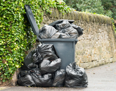 Waste Management「Overflowing Wheelie Bin」:スマホ壁紙(3)