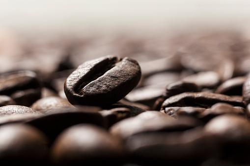 Kyoto Prefecture「close up coffee bean」:スマホ壁紙(15)