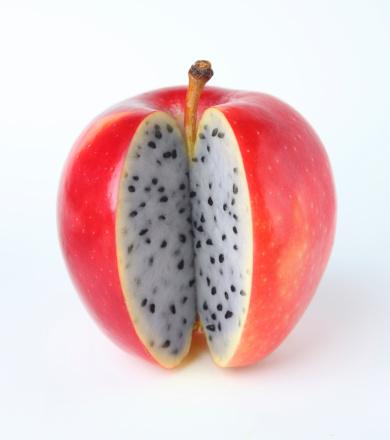 Tasting「apple or Dragon fruit」:スマホ壁紙(13)