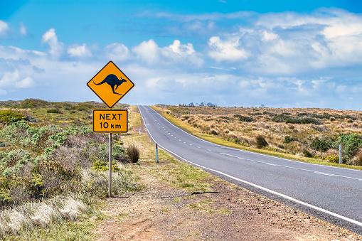 Guidance「Kangaroo crossing sign by Great Ocean Road against sky, Victoria, Australia」:スマホ壁紙(17)