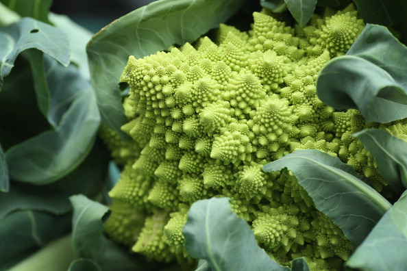 Broccoli「Growers And Enthusiasts Enjoy The RHS London Harvest Festival Show」:写真・画像(0)[壁紙.com]