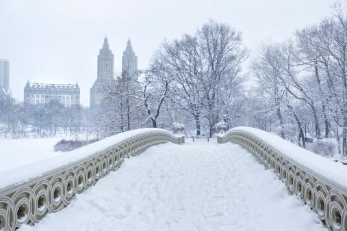 Cast Iron「Bow Bridge with West Side Winter」:スマホ壁紙(11)