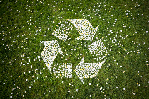 Recycling「Recycle Logo in Daisies on Grass」:スマホ壁紙(1)