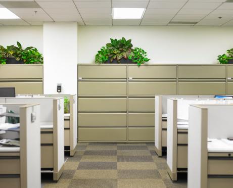 Conformity「Corridor dividing cubicles」:スマホ壁紙(14)