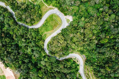 Hairpin Curve「Road through rainforest」:スマホ壁紙(8)