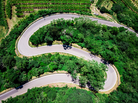 Hairpin Curve「Italy, Veneto, Verona, Aerial view of road winding along forested hill in spring」:スマホ壁紙(6)