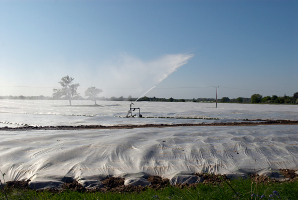 Clear Sky「Crop spraying, Suffolk, UK」:写真・画像(19)[壁紙.com]