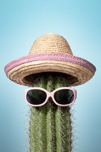 Mexico「Pink mexico cactus. Summer Humor Heat Holiday Sunglasses Sombrero」:スマホ壁紙(4)