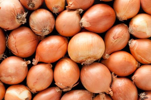 Onion「Onions background」:スマホ壁紙(6)
