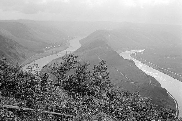 Appearance「Moselle」:写真・画像(6)[壁紙.com]