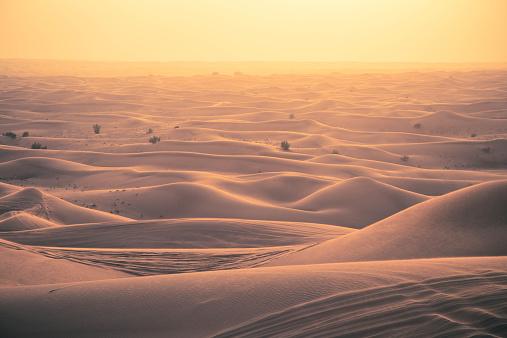 Dry「View of sand dunes at sunset」:スマホ壁紙(5)