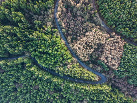 Hairpin Curve「Hairpin bend from above, Tipperary, Ireland.」:スマホ壁紙(4)