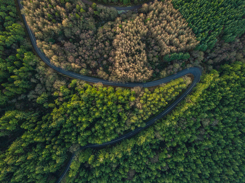 Hairpin Curve「Hairpin bend from above, Tipperary, Ireland.」:スマホ壁紙(14)