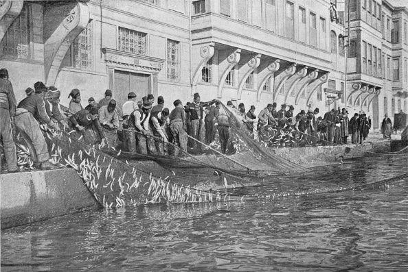 Fisher - Role「'Hauling in a Grippo of 15000 Fish at Emirgian on the Bosphorus', c1901, (1903)」:写真・画像(18)[壁紙.com]