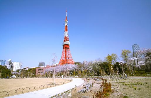 Tokyo Tower「Shiba Park and Tokyo Tower, Minato Ward, Tokyo, Japan」:スマホ壁紙(15)