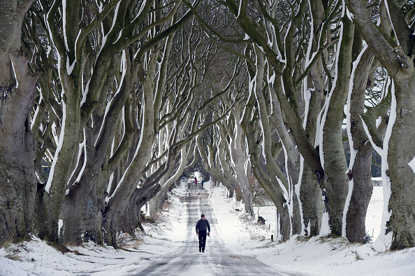 Winter「Snow And High Winds Hit The UK」:写真・画像(7)[壁紙.com]