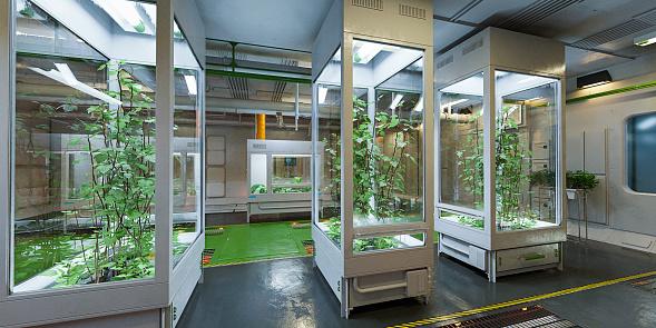 Gardening「Futuristic indoor plant growth」:スマホ壁紙(1)