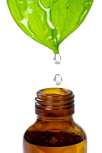 Spilling「Herbal Essence」:スマホ壁紙(2)