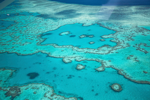 Ecosystem「Aerial views over the Whitsunday Island chain and the Great Barrier Reef.」:スマホ壁紙(17)