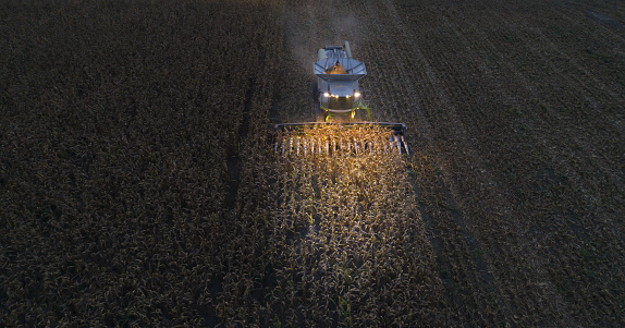 Planting「Aerial View of a Combine Harvester Harvesting the Agricultiral Fierld After Sunset. Summertime. Agricultural Equipment in Cultivated Land. Nighttime. Working Late.」:スマホ壁紙(18)