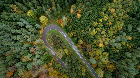 Hairpin Curve「Aerial view of hairpin curve in a forest with autumn colors」:スマホ壁紙(5)