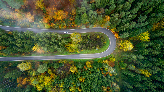 Hairpin Curve「Aerial view of hairpin curve with slight fog through a forest in autumn」:スマホ壁紙(13)