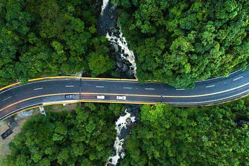 Latin America「Aerial View of road in a forest」:スマホ壁紙(13)