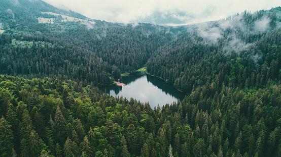 Ukraine「Aerial view of Synevir lake in the  Carpathian Mountains in Ukraine」:スマホ壁紙(17)