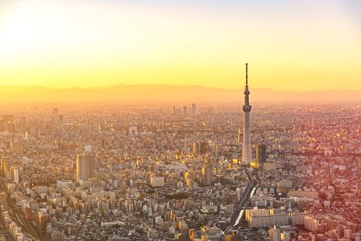 Tokyo Tower「Aerial view of Tokyo Japan Skyline」:スマホ壁紙(5)