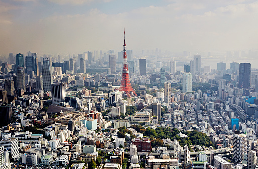Tokyo Tower「Aerial view of Tokyo with Tokyo Tower」:スマホ壁紙(17)