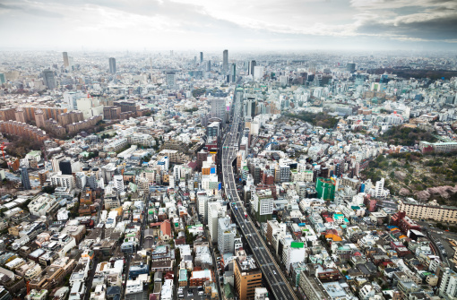 Tokyo Tower「Aerial view of the mega city of Tokyo.」:スマホ壁紙(16)