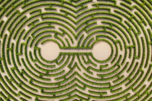 Connection「Aerial view of two connected points in a hedge maze」:スマホ壁紙(7)