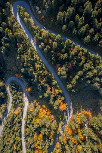 Hairpin Curve「Aerial view of cars driving along a winding road through an autumn forest, Salzburg, Austria」:スマホ壁紙(4)