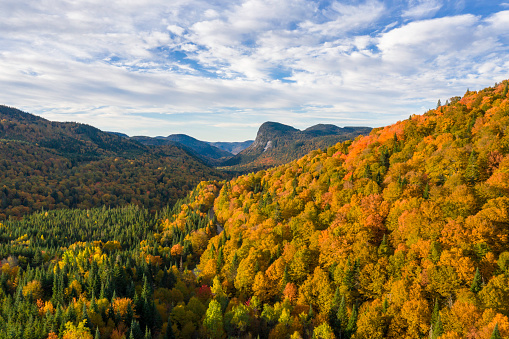 Boreal Forest「Aerial View of Boreal Forest Nature in Autumn Season at Sunrise, Quebec, Canada」:スマホ壁紙(1)